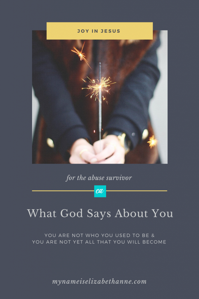 What God Says About You My Name Is Elizabeth Anne