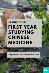 First Year Studying Chinese Medicine Spring My Name Is Elizabeth Anne