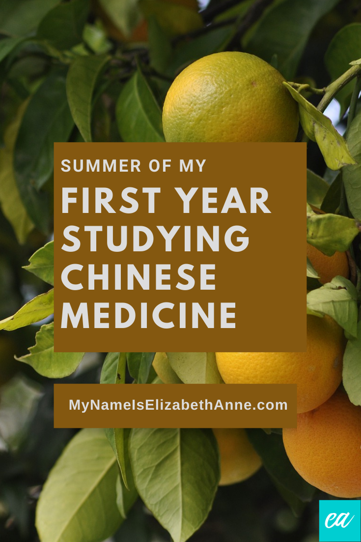 First Year Studying Chinese Medicine Summer My Name Is Elizabeth Anne