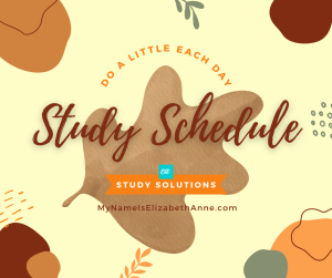 Study Schedule Study A Little Each Day My Name Is Elizabeth Anne Study Solutions